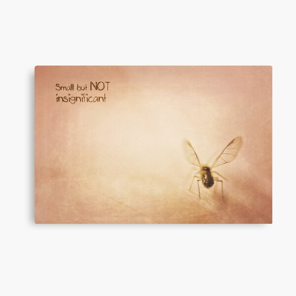 ~ Small, but NOT insignificant ~ Metal Print