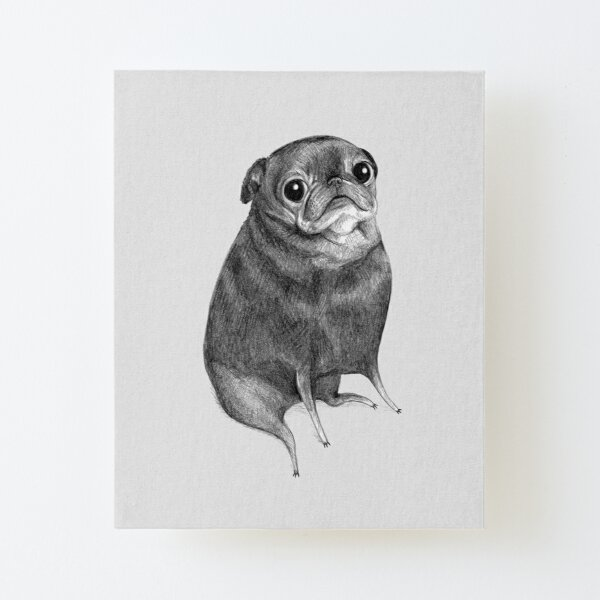 Sweet Black Pug Canvas Mounted Print
