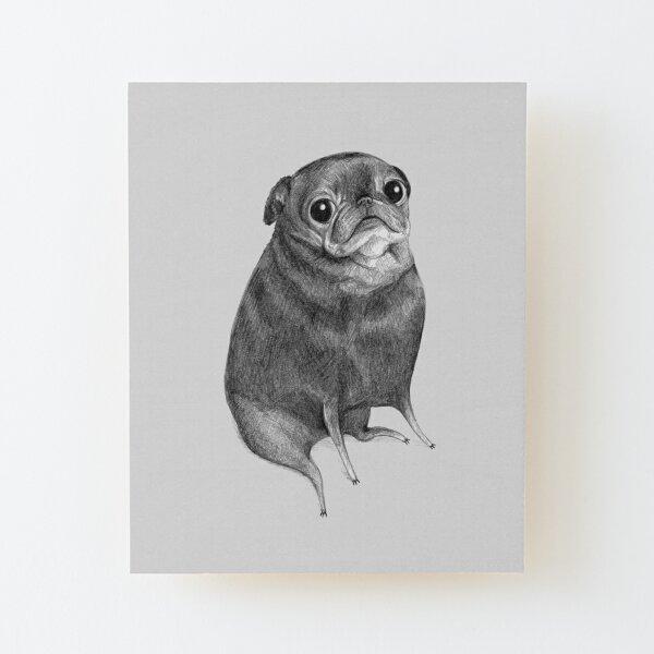 Sweet Black Pug Wood Mounted Print