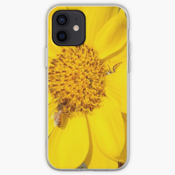 Peek-a-boo spider iPhone Soft Case