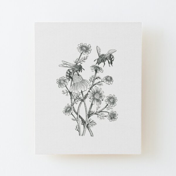 bees and chamomile on honey background  Wood Mounted Print