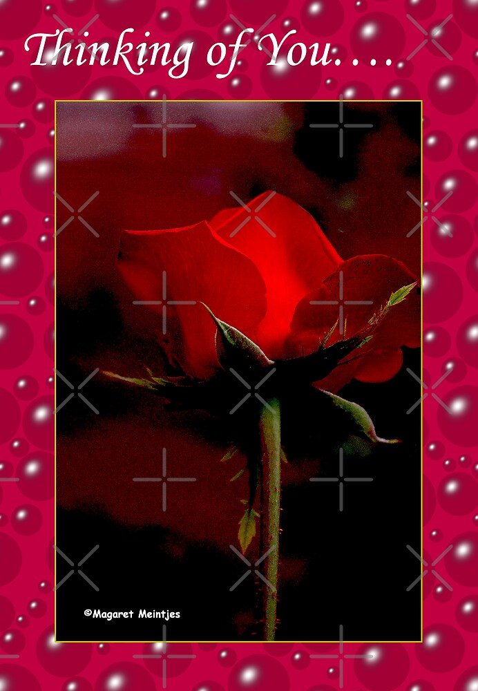 """""""THINKING OF YOU - RED ROSE CARD"""" by Magriet Meintjes ..."""