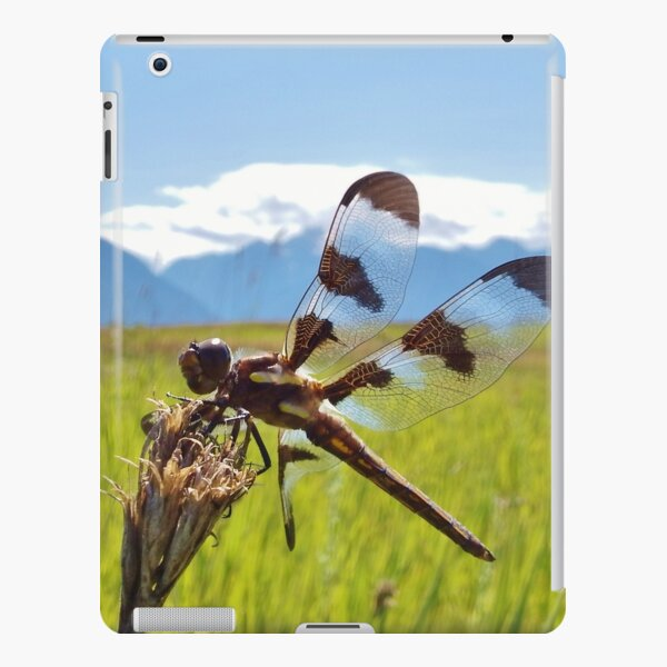 Black & White Dragonfly iPad Snap Case