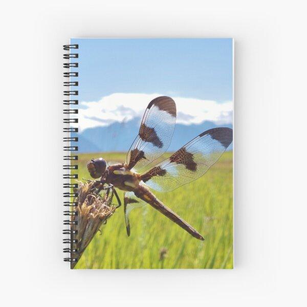 Black & White Dragonfly Spiral Notebook
