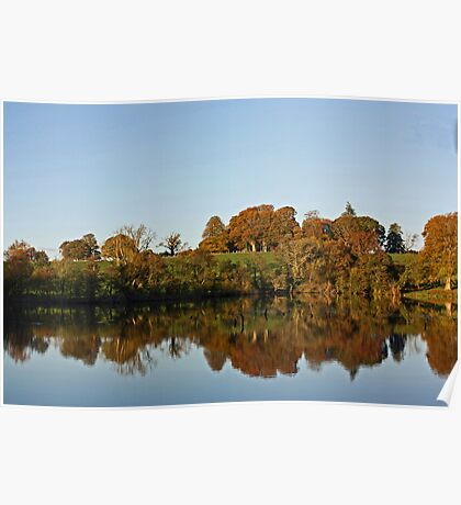 Derries Lake in Autumn #2 Poster