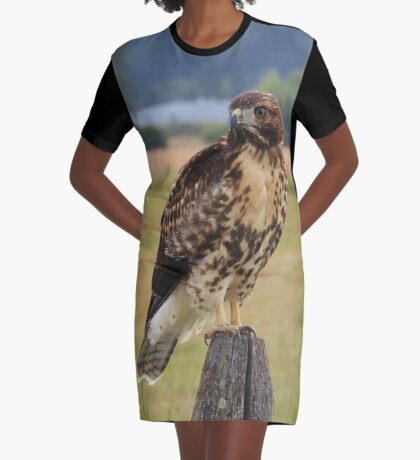 Red-Tailed Hawk Graphic T-Shirt Dress