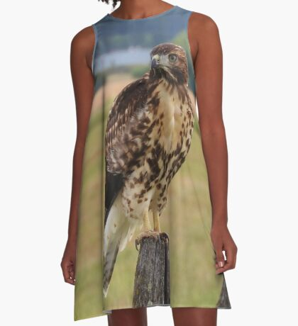 Red-Tailed Hawk A-Line Dress