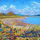 Enniscrone Beach, Grafschaft Sligo, Irland von eolai