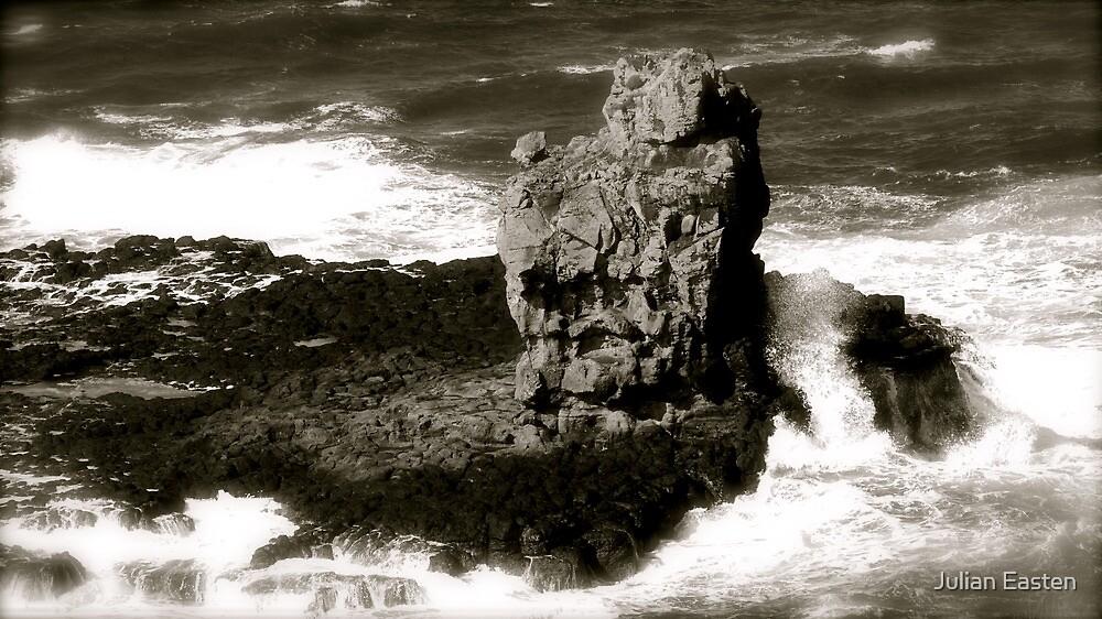 Rocky island in the Giants Causeway by Julian Easten