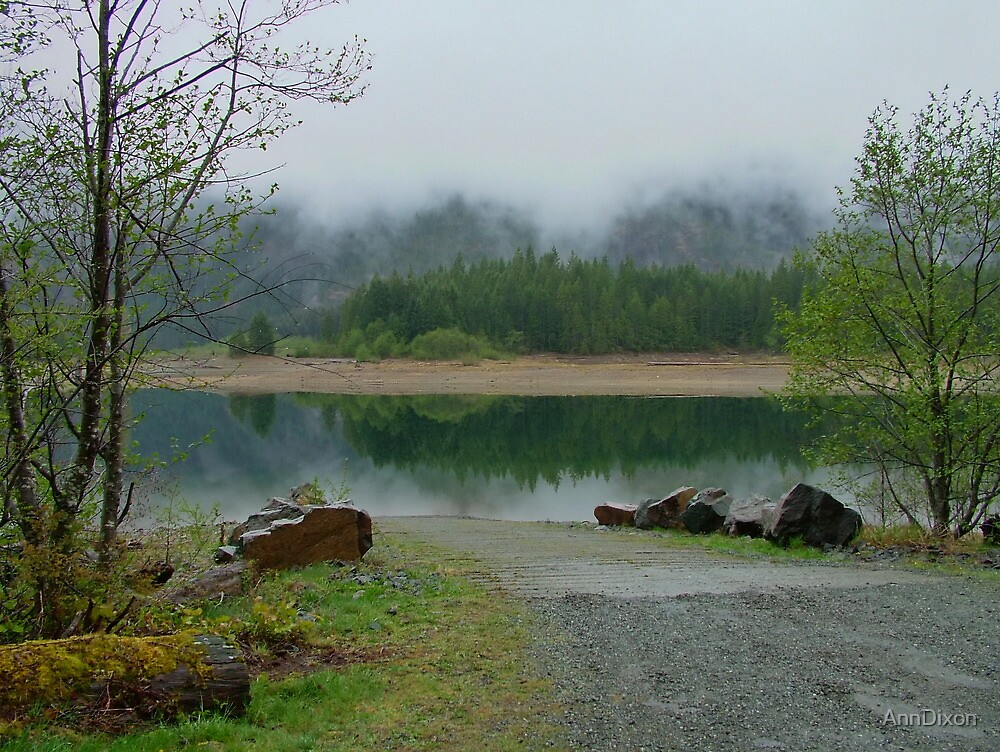 BUTTLE Lake in the Mist, Vancouver Island BC Canada by AnnDixon