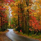 Fall in the Smoky Mountains by Marylee Pope