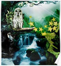 Secrets of Nature Poster
