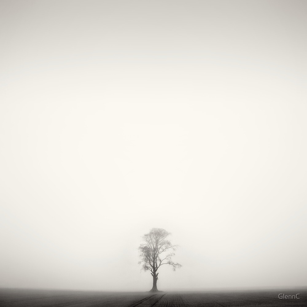 I am alone but not lonely.... by GlennC