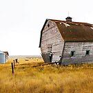 The Walking Barn by Beth Mason
