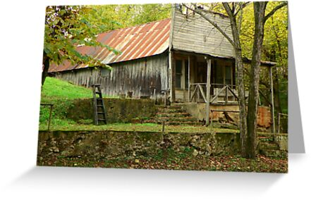 Looking Back In Time 2, Old War Eagle Mill Store by David  Hughes