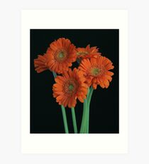 The Flower Session! Art Print
