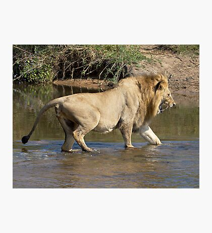 Majingilane Male Crossing River Photographic Print