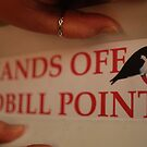 hands off redbill point  by twistwashere