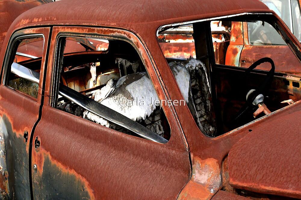 Rust Bucket ~ BoneYard Series by Carla Jensen