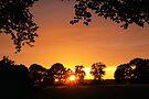 Summer Sunset by Jo Nijenhuis