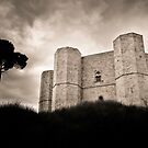 The Name of the Rose (Castel del Monte) by Saka