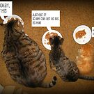 Kitty Dinner Conversation by Angie O'Connor