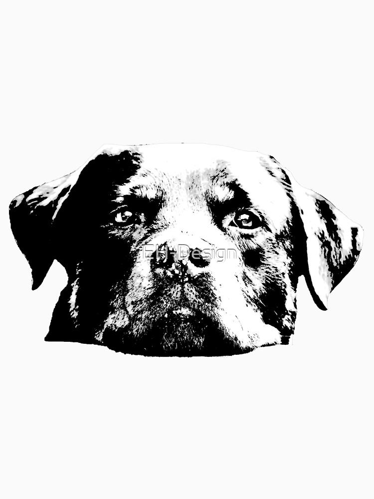 Rottweiler von EH-Design