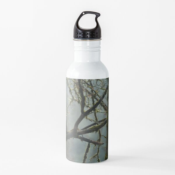Eagle in the rainforest Water Bottle