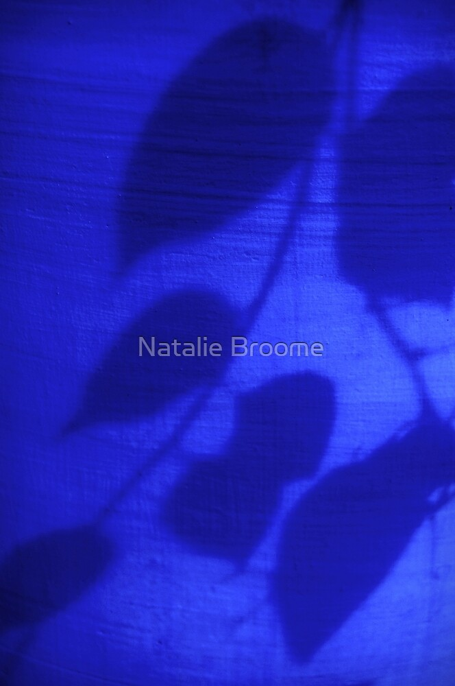 Blue Shadow by Natalie Broome