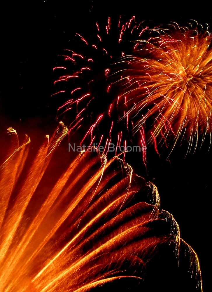 Firework 1 by Natalie Broome