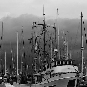 In the Harbor by Shutterbug-csg