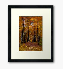 ♥ ♥ ♥ ♥ series. Autumn Leaves (Les Feuilles Mortes).Memories of those happy times when we were all together. Brown Sugar Storybook.  Favorites: 13 Views: 1742 . Thanks! Framed Print