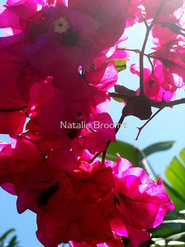 Cinsta Flower by Natalie Broome