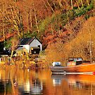 Mail Boat,Balmaha,Loch Lomond,Scotland. by Jim Wilson