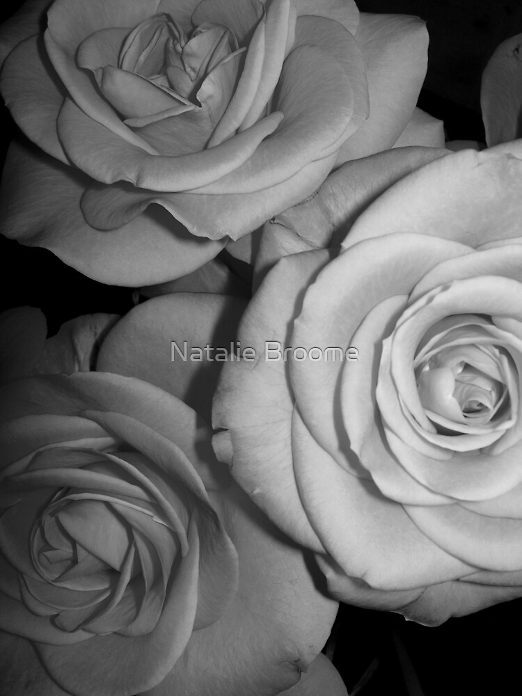 Rose 2 by Natalie Broome