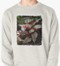 Hidden Red Begonias Sweatshirt