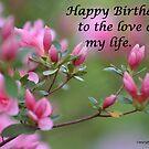 Happy Birthday Flowers by DebbieCHayes