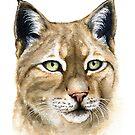 Watercolor Lynx by Denise Soden