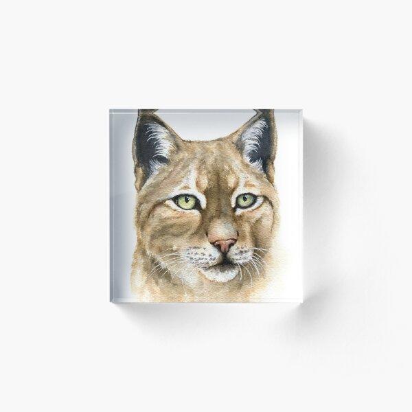 Watercolor Lynx Acrylic Block