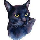 Black Cat Watercolor by Denise Soden