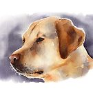 Watercolor Yellow Lab by Denise Soden