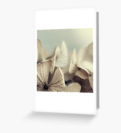 hydrangea~ Greeting Card