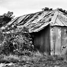Old House on the Turon River NSW Australia by Bev Woodman