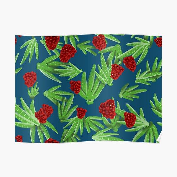 Aloe & Rasberries Poster