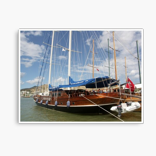Day Cruise Canvas Print