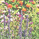 Wild Bloom by Vintageskies
