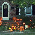 pumpkim house by deegarra
