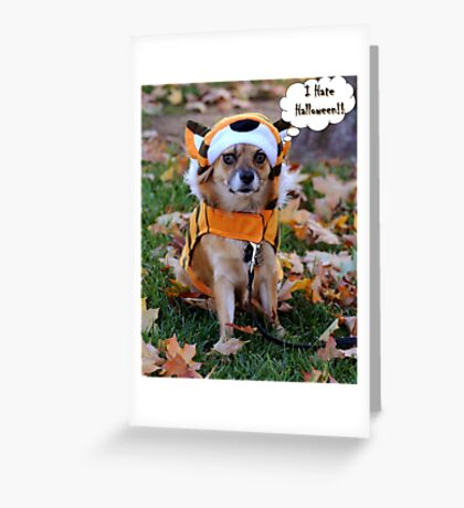 Happy Halloween to One and All Greeting Card