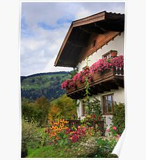Typical Austrian architecture Poster