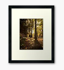 Standing In A Row Framed Print